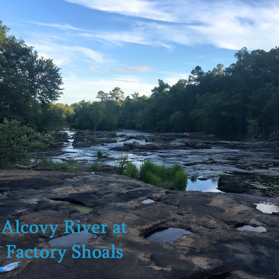 alcovy river at factory shoals
