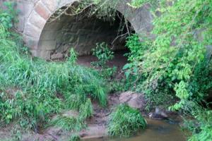 dried indian creek scene