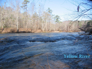 yellow river scene